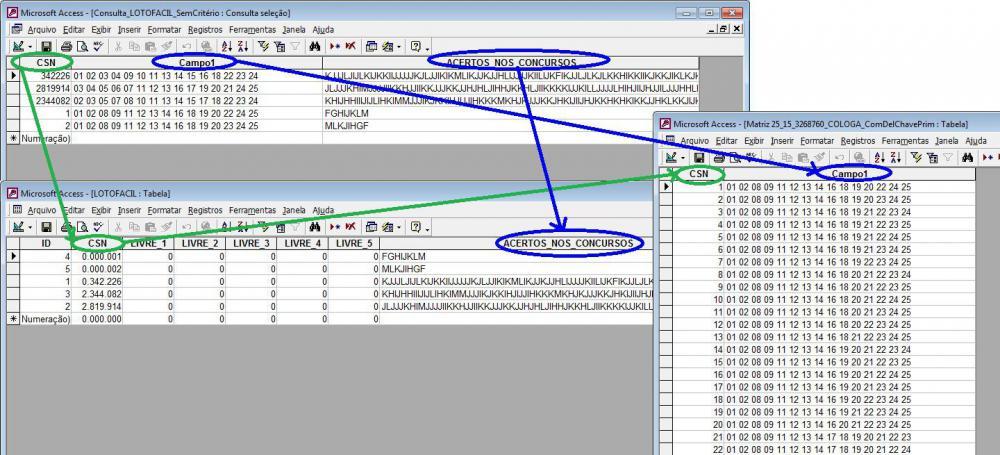 LF 374 Joh2010 SGDB ACCESS _teste Consulta (CSN errado).JPG